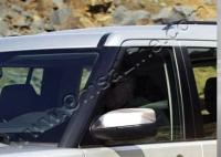 Накладки на зеркала (2 шт, нерж.) - Land Rover Discovery II